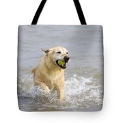 Labrador-mix Retrieving Ball Tote Bag