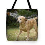 Labrador Playing In Water Tote Bag