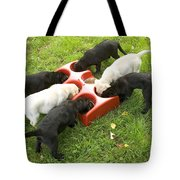 Labrador Puppies Eating Tote Bag