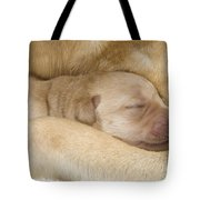 Labrador Puppy On Mother Tote Bag
