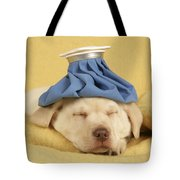 Labrador Puppy With Ice Pack Tote Bag