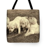 Labrador Retriever Puppies And Feather Vintage Tote Bag