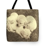 Labrador Retriever Puppies Nap Time Vintage Tote Bag by Jennie Marie Schell