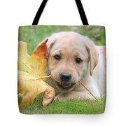Labrador Retriever Puppy With Autumn Leaf Tote Bag