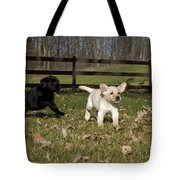 Labrador Retriever Pups Tote Bag by Linda Freshwaters Arndt