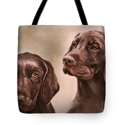 Labrador Retrievers Tote Bag