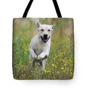 Labrador Running Tote Bag
