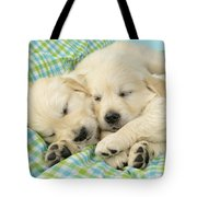 Labs Sleeping On A Blanket Tote Bag by Greg Cuddiford