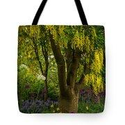 Laburnum Tree In Bloom Tote Bag