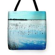 Lacassine Nwr Blue Pool Tote Bag