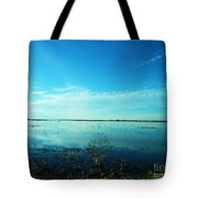 Lacassine Nwr Pool Blue And Green Tote Bag