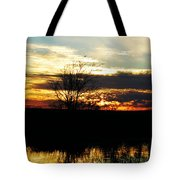 Lacassine Painted Sunset Tote Bag