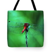 Lace Wings Tote Bag