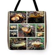 Lactarius Torminosus - Yellow Mushrooms Tote Bag