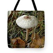 Lacy Parasol Mushroom Tote Bag