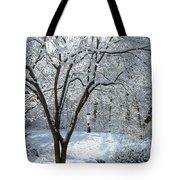 Lacy Snowfall Tote Bag