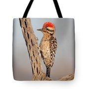 Ladder-backed Woodpecker Tote Bag
