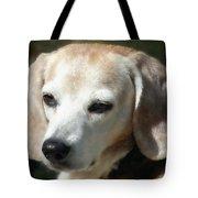 Lady 16 Tote Bag