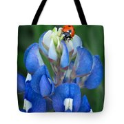 Lady Bug And Bluebonnet Tote Bag