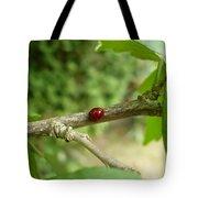 Lady Bug Branch Tote Bag