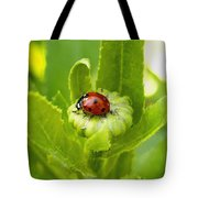 Lady Bug In The Garden Tote Bag