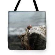Lady Bug Lake Tote Bag