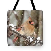 Lady In The Snow Tote Bag