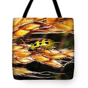 Lady Of A Different Color... Tote Bag