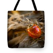 Lady Of Leisure Tote Bag