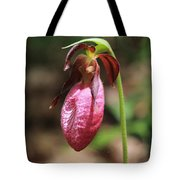 Lady Slipper At Moore State Park Close Up 2 Tote Bag
