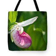 Lady Slipper Illuminated Tote Bag