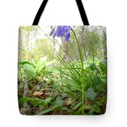 Lady Spencer's Bluebell Tote Bag