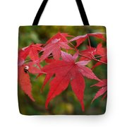Ladybird With Autumn Leaves Tote Bag