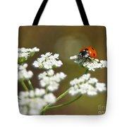 Ladybug In White Tote Bag
