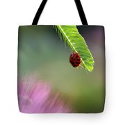 Ladybug With Mimosa Tote Bag