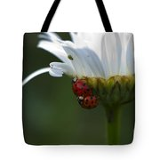 Ladybugs On Shasta Daisy Tote Bag