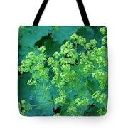 Lady's Mantel Tote Bag