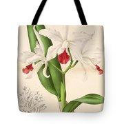 Laelia Elegans Tote Bag by Philip Ralley
