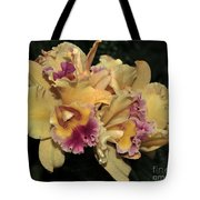 Laeliocattleya Lydia Hubbell Tote Bag