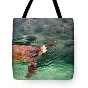 Lager Head Turtle 002 Tote Bag