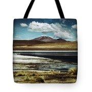 Lagoon Grass Bolivia Vintage Tote Bag