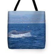 Laguna Whale Tote Bag
