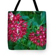 Lahaina Flowers 1 Tote Bag