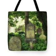 Lain Under An Ivy Blanket Tote Bag