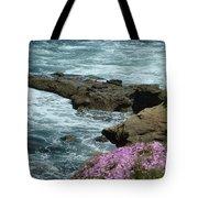Lajolla Shore Tote Bag