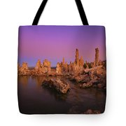 Lake 11 Tote Bag