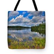 Lake Abanakee In Indian Lake New York Tote Bag by David Patterson