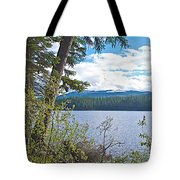 Lake Alva From National Forest Campground Site-yt Tote Bag