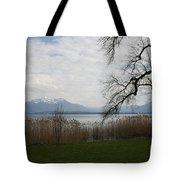 Lake And Mountains Tote Bag