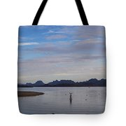 Lake Beach Tote Bag